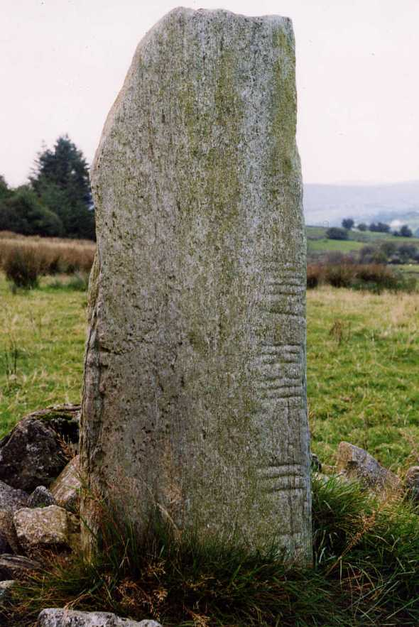 Ogham stone, Co. Tyrone, Ireland  Photo: www.shee-eire.com
